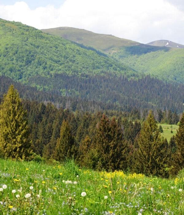 Поход по Боржаве Карпаты с planb.ua