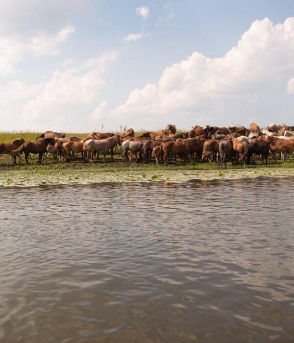 фото _ сплав по реке на байдарках с planB.ua