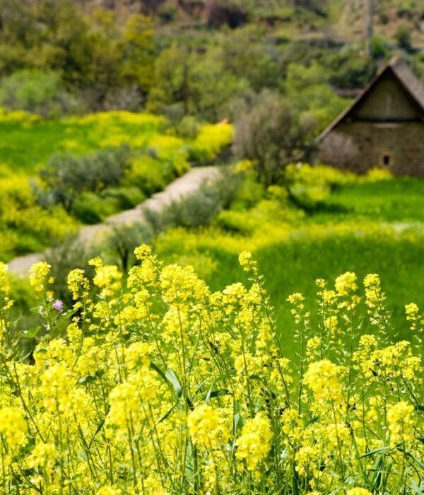 Поход по Кипру с planB.ua