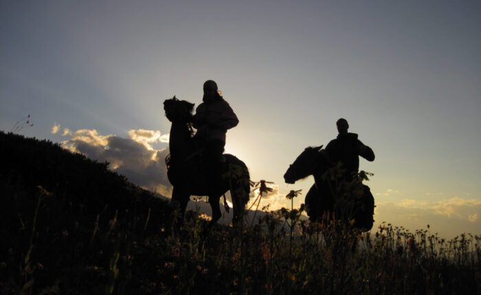 фотографии - поход по Грузии с лошадьми и планомБ