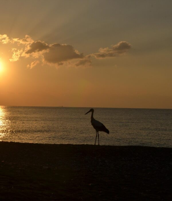 фото_ путешествие по Криту с planB.ua