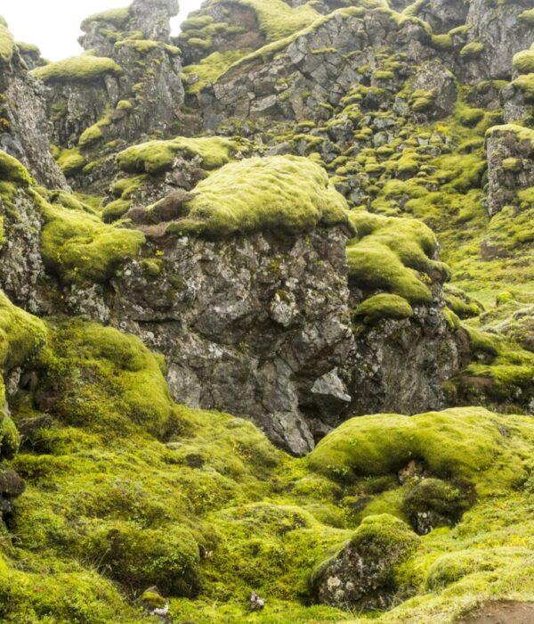 фото _ в центре Исландии в авторском автотуре по Исландии с planB.ua