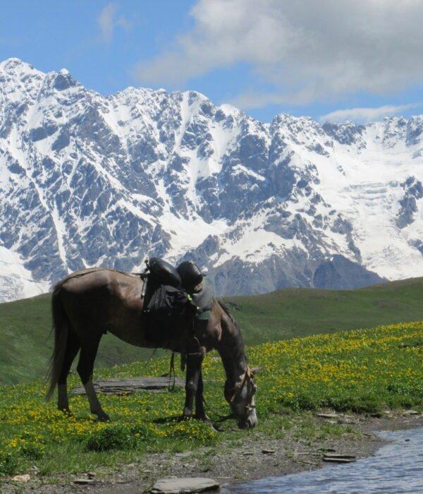 фото - поход по Грузии с планБ