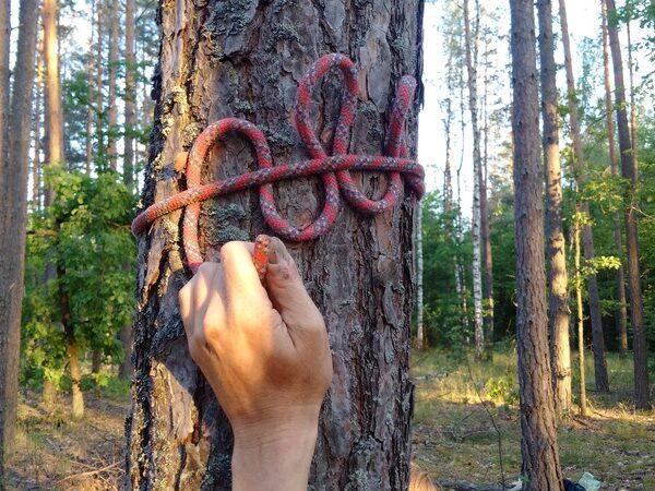 Основы выживания с planB.ua