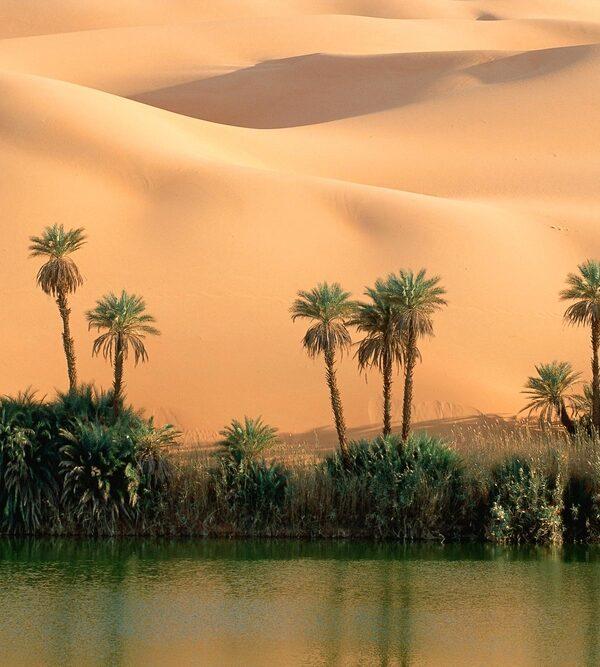 фото_ оазисы Сахары
